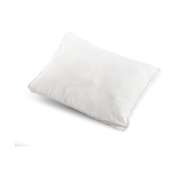 Polštář na spaní s dutými vlákny Dreamhouse Count, 50x70cm
