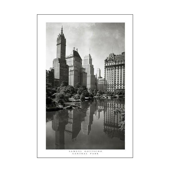 Fotoobraz Central Park, 90x60 cm