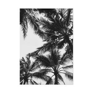 Plakát HF Living Botanic Palms, 21 x 30 cm