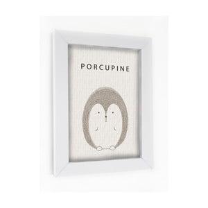 Obraz v rámu Porcupine