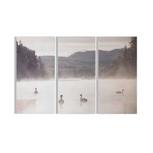 Sada 3 obrazů Graham & Brown Swan Lakeside, 30 x 60 cm