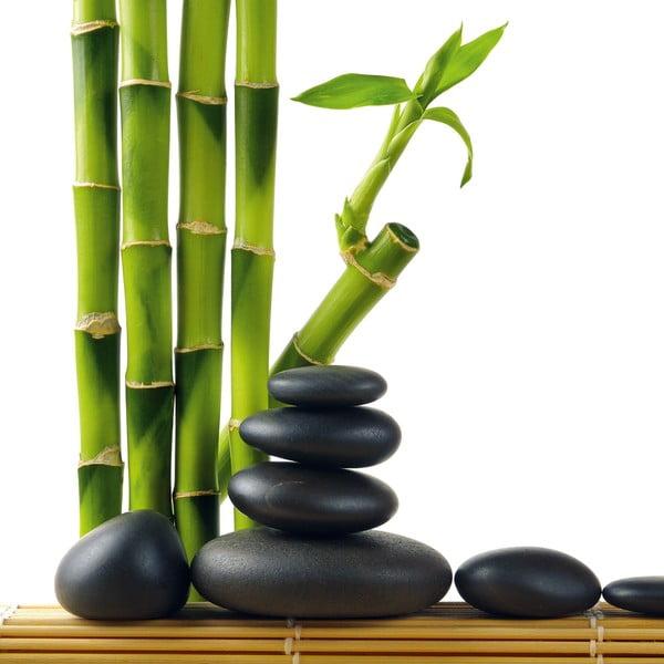 Skleněný obraz Lucky Bamboo, 30x30 cm