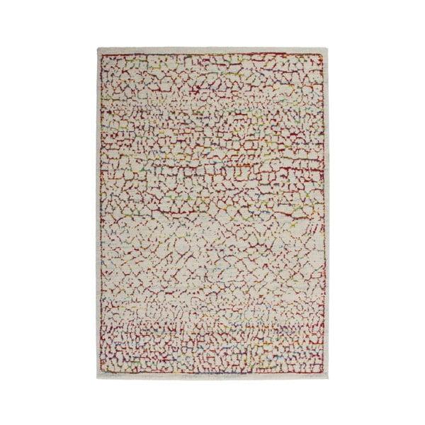 Koberec Desire Multi 80x150 cm, barevný
