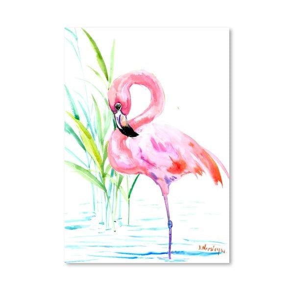 Plakát Flamingo