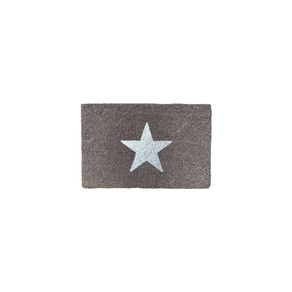 Rohožka z přírodního kokosového vlákna Artsy Doormats Glitter Star,40x60cm