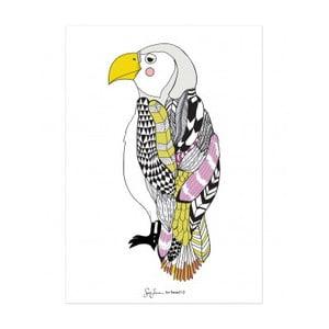 Plakát Bird