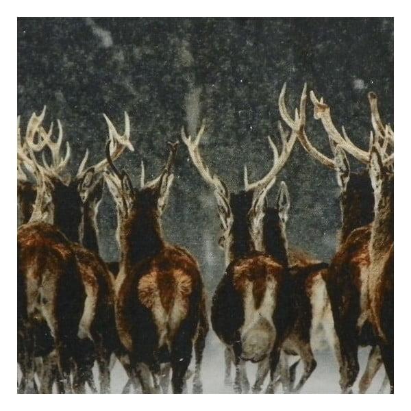 Polštář Deer Racing 50x35 cm