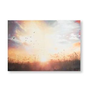 Obraz Graham & Brown Serene Sunset Meadow, 100 x 70 cm