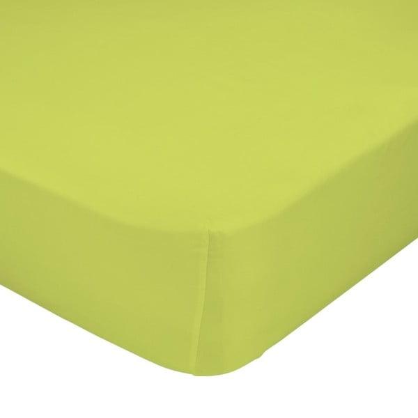 Prostěradlo Little W, 60x120 cm, zelené