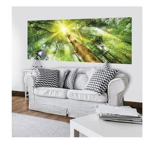 Velkoformátová nástěnná tapeta Vavex Sunlight, 250 x 104 cm