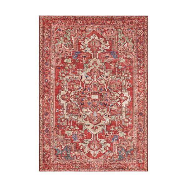 Czerwony dywan Nouristan Leta, 80x150 cm