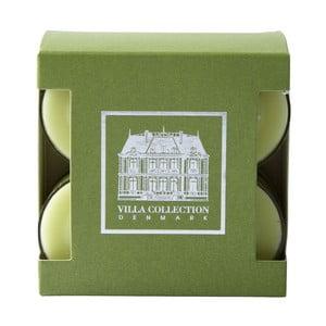 Sada 8 čajových svíček s vůní zeleného čaje a okurky Villa Collection