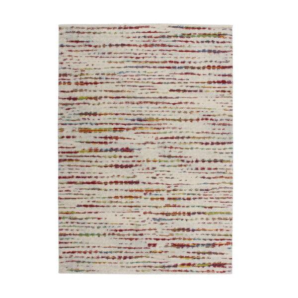 Koberec Desire 120x170 cm, barevný