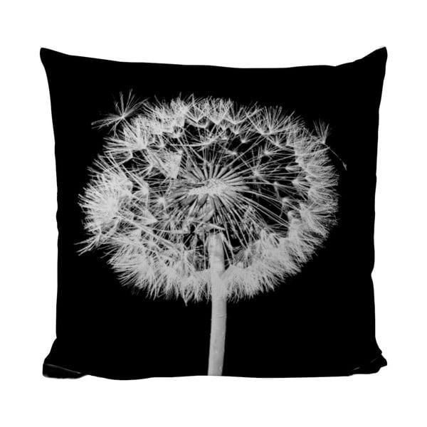 Polštářek Black Shake Dandelion, 50x50 cm