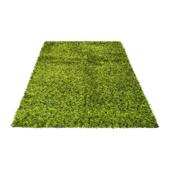 Koberec Damru Green, 170x240 cm