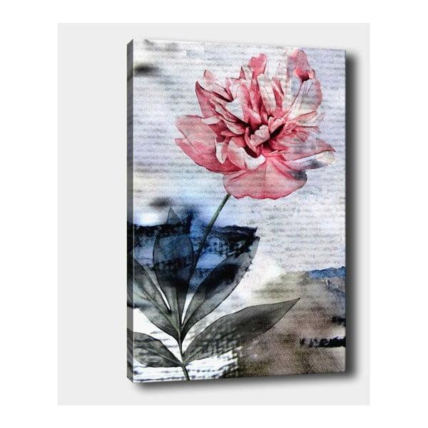 Nástěnný obraz na plátně Tablo Center Sweet, 40 x 60 cm