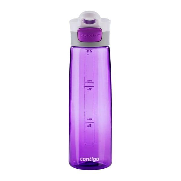 Fialová sportovní lahev Premier Housewares Grace, 750 ml