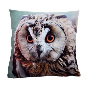 Polštář Animals Owl, 42x42 cm