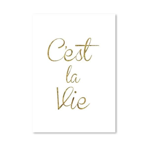 Plakát Cest La Vie, 42x60 cm