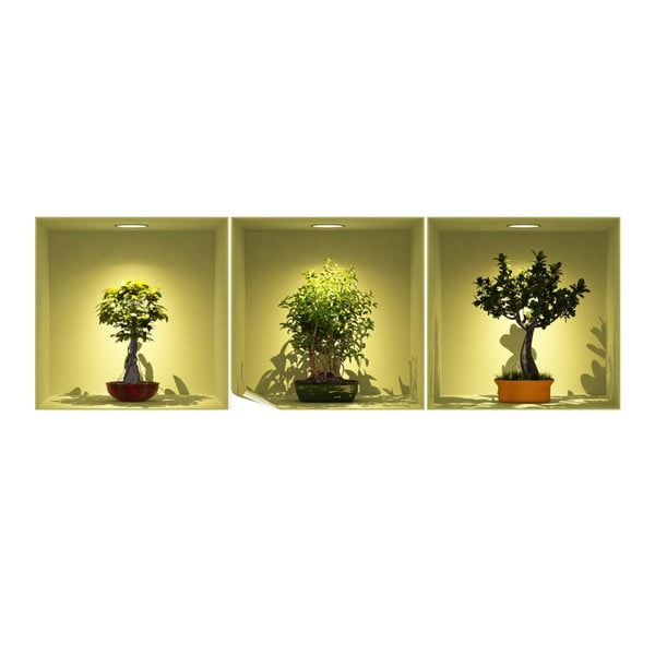 Sada 3 samolepek s 3D efektem Ambiance Bonsai Trees On Spot