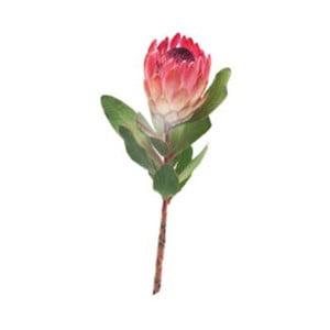 Autocolant CousCous Protea