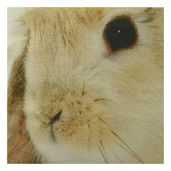Polštář Christmas Rabbit 50x50 cm