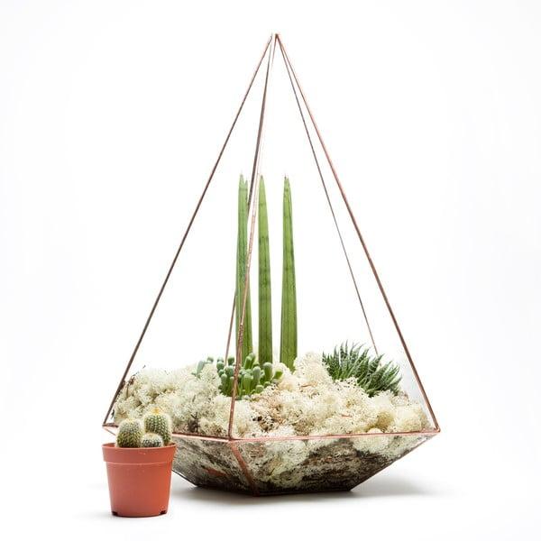 Terárium s rostlinami Urban Botanist Supersize Jewel, světlý rám