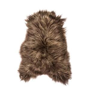 Hnědá ovčí kožešina s dlouhým chlupem Arctic Fur Chesto, 90x50cm