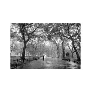 Jednodílná fototapeta Procházka v dešti, 175 x 115 cm