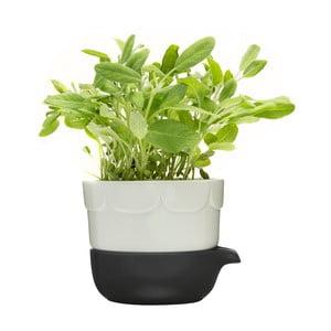 Zelený květináč se zavlažovací miskou Sagaform