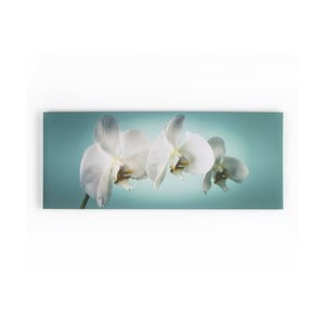 Obraz Graham & Brown Teal Orchid, 100 x 40 cm