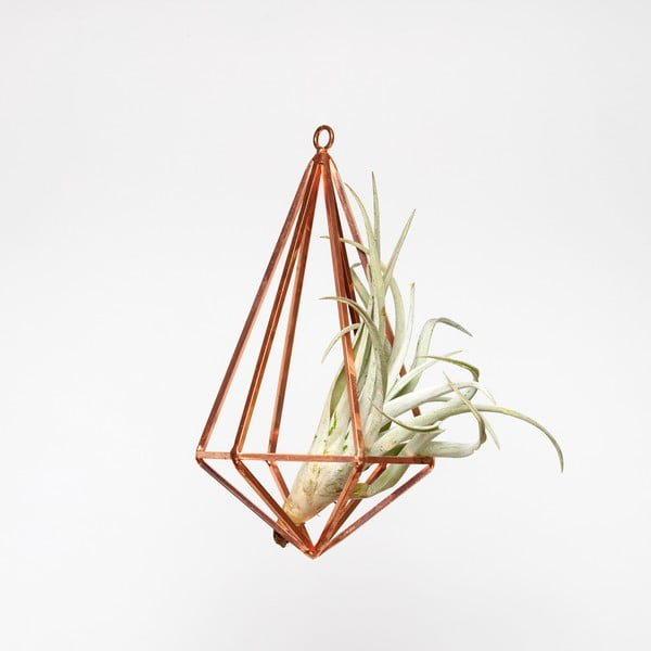 Závěsné terárium s rostlinou Urban Botanist Prism Large, světlý rám