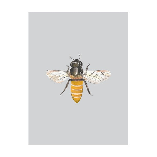 Plakát Apolena Little Bee, 40x50cm