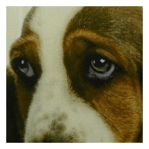 Polštář Basset Pup 50x50 cm