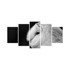 Vícedílný obraz Black&White no. 90, 100x50 cm