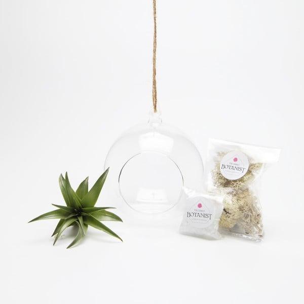 Závěsné terárium s rostlinami Urban Botanist Globe Mini DIY