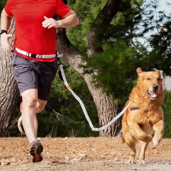Lesă de alergat pentru câine InnovaGoods
