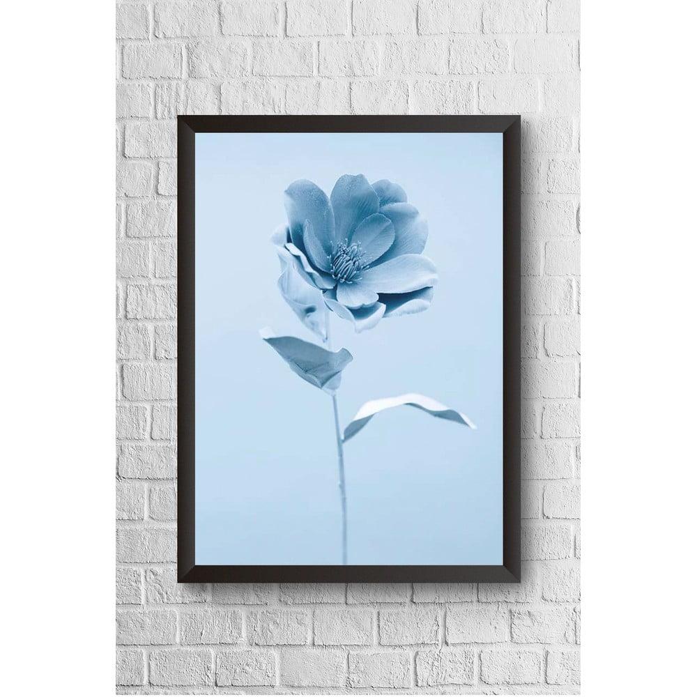 Nástěnný obraz v rámu Piacenza Art Blue Flower Alone, 23 x 33 cm