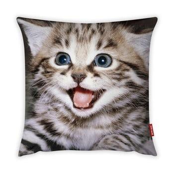 Față de pernă Vitaus Kitten, 43 x 43 cm imagine