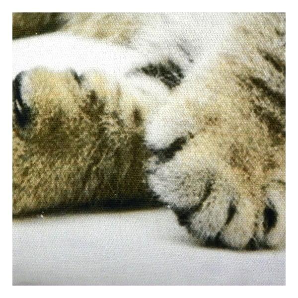 Pernă Cat 50x35 cm