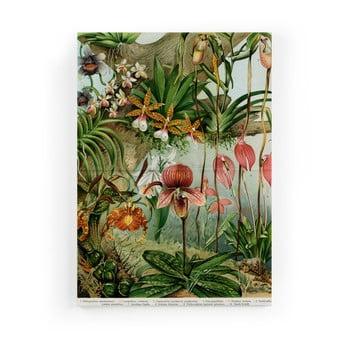 Tablou pe pânză Surdic Jungle Flowers, 50 x 70 cm imagine