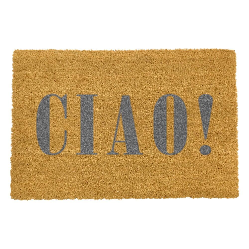 Rohožka z přírodního kokosového vlákna Artsy Doormats Ciao Grey,40x60cm