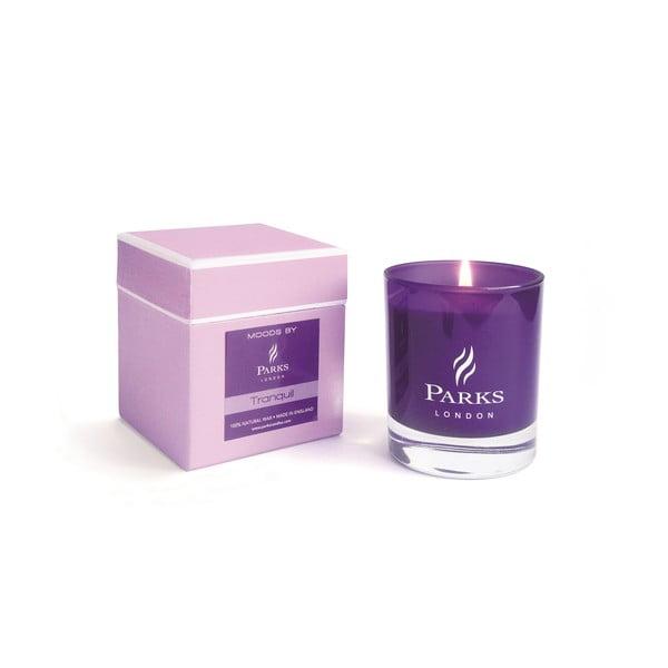 Svíčka s vůní jasmínu a levandule Parks Candles London  Tranquill Moods Purple, 50 hodin hoření