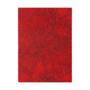 Koberec Asiatic Carpets Harlequin Draw Red, 120x170 cm