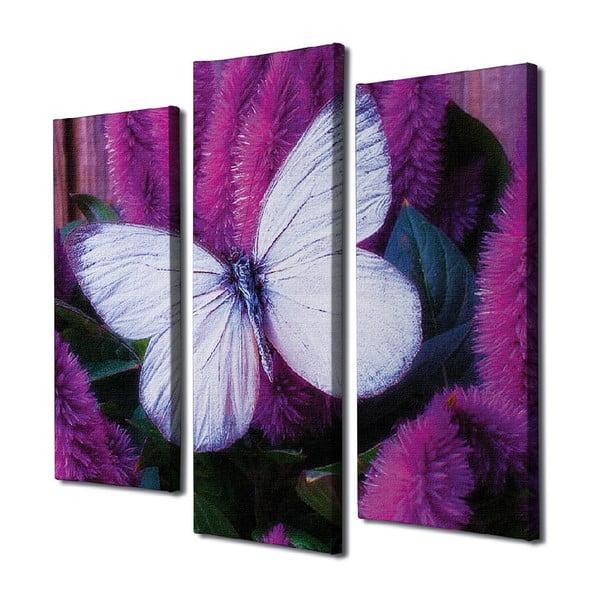 Butterfly 3 részes vászon fali kép