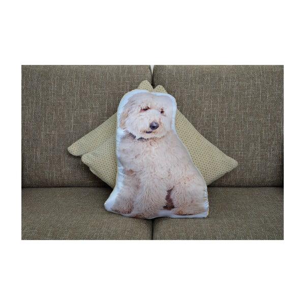 Polštářek Adorable Cushions Labradoodle