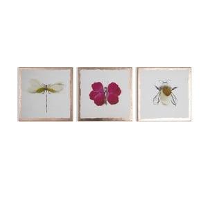 Vícedílný obraz Graham & Brown Beautiful Bugs, 30 x 30 cm