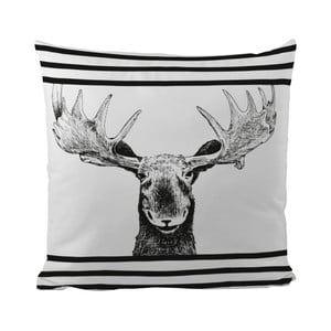 Polštář Black Shake Smiling Moose, 50x50 cm