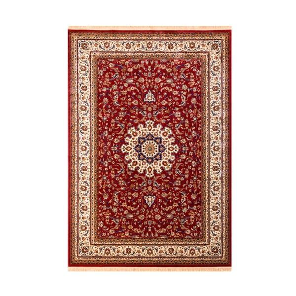 Koberec Aspire Red, 70x140 cm