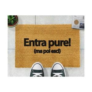 Rohožka Artsy Doormats Entrapure, 40x60cm